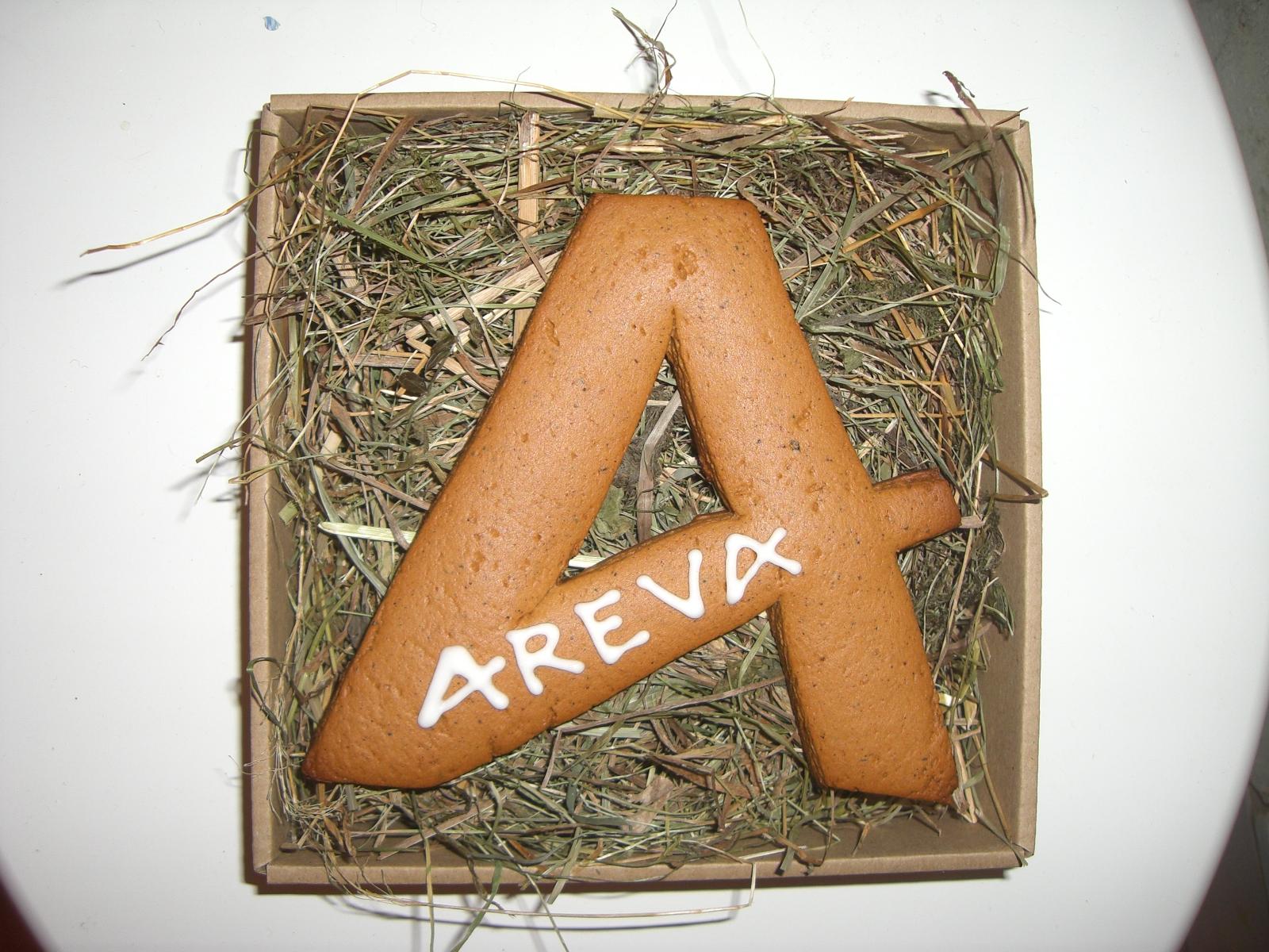 Pudełko z piernikiem Areva