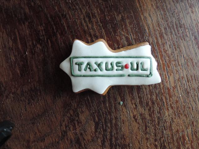 Kometa z logo Taxus.ul